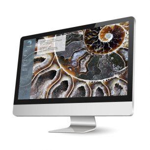 Website für GeoTrade GmbH
